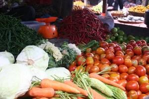 sayuran sumatera barat